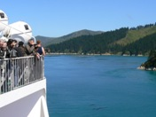 Close-up viewing of the Marlborough Sounds fjords